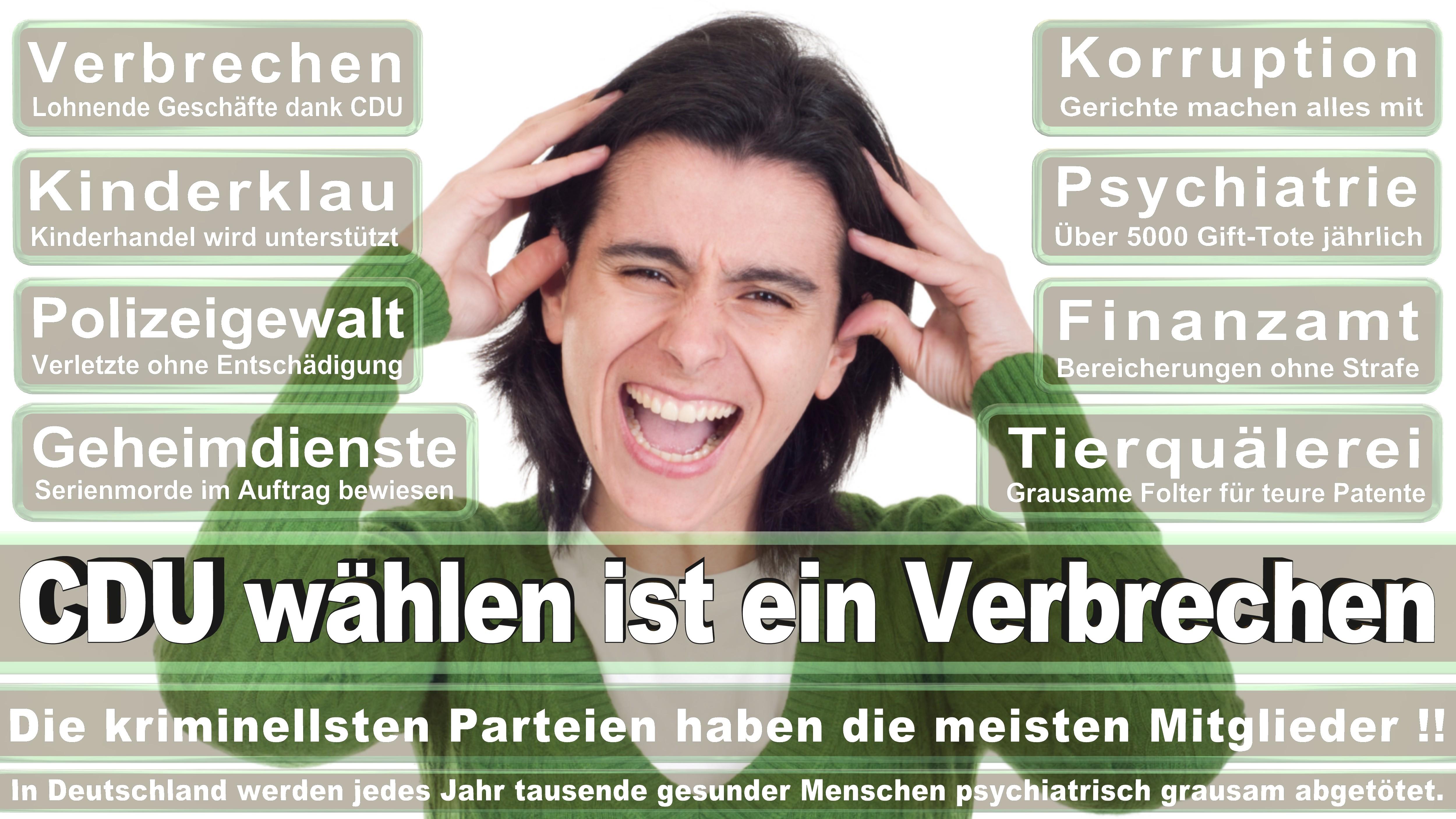 Bundestagswahl-2017-CDU-SPD-FDP (294)