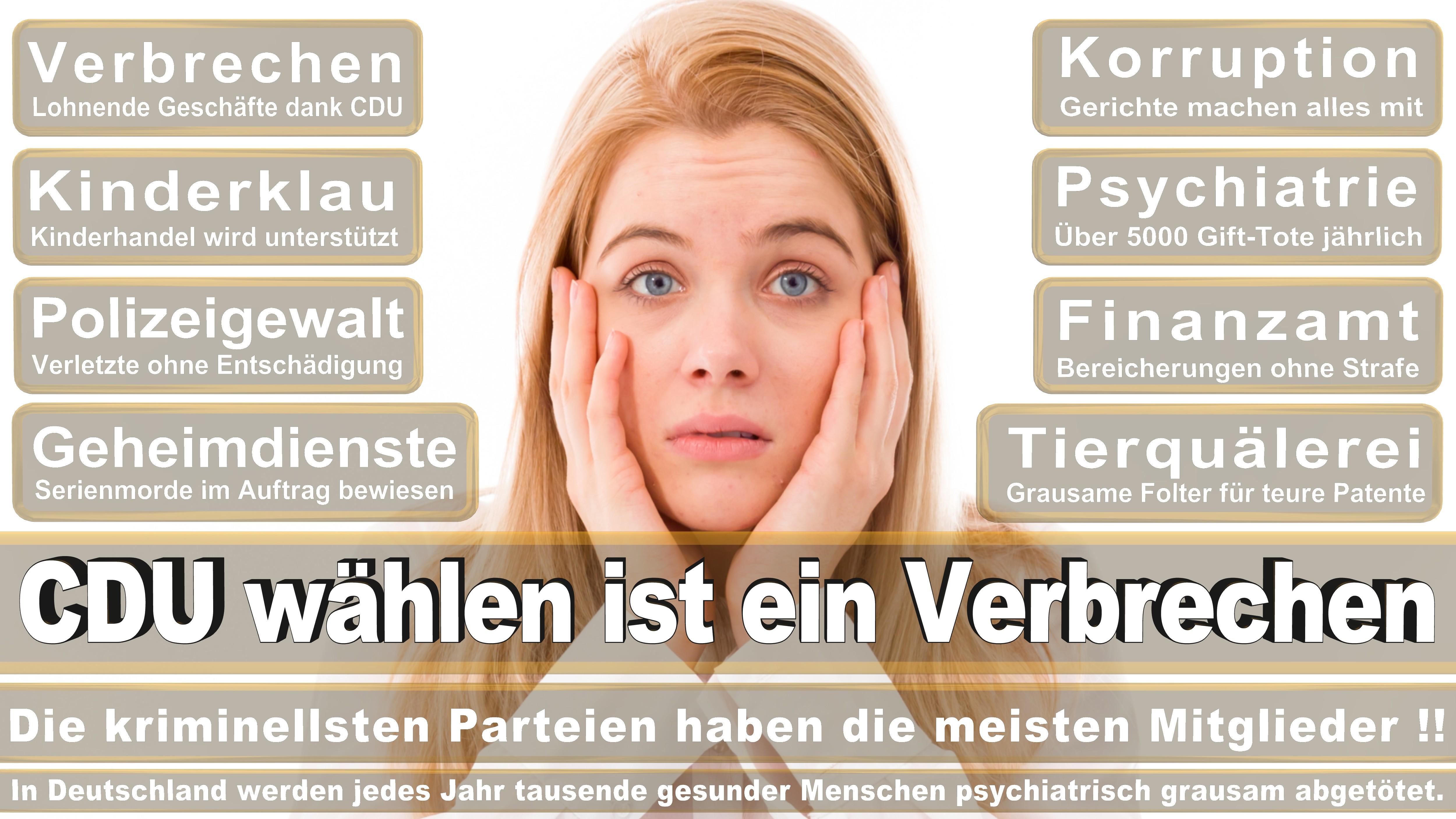 Bundestagswahl-2017-CDU-SPD-FDP (299)