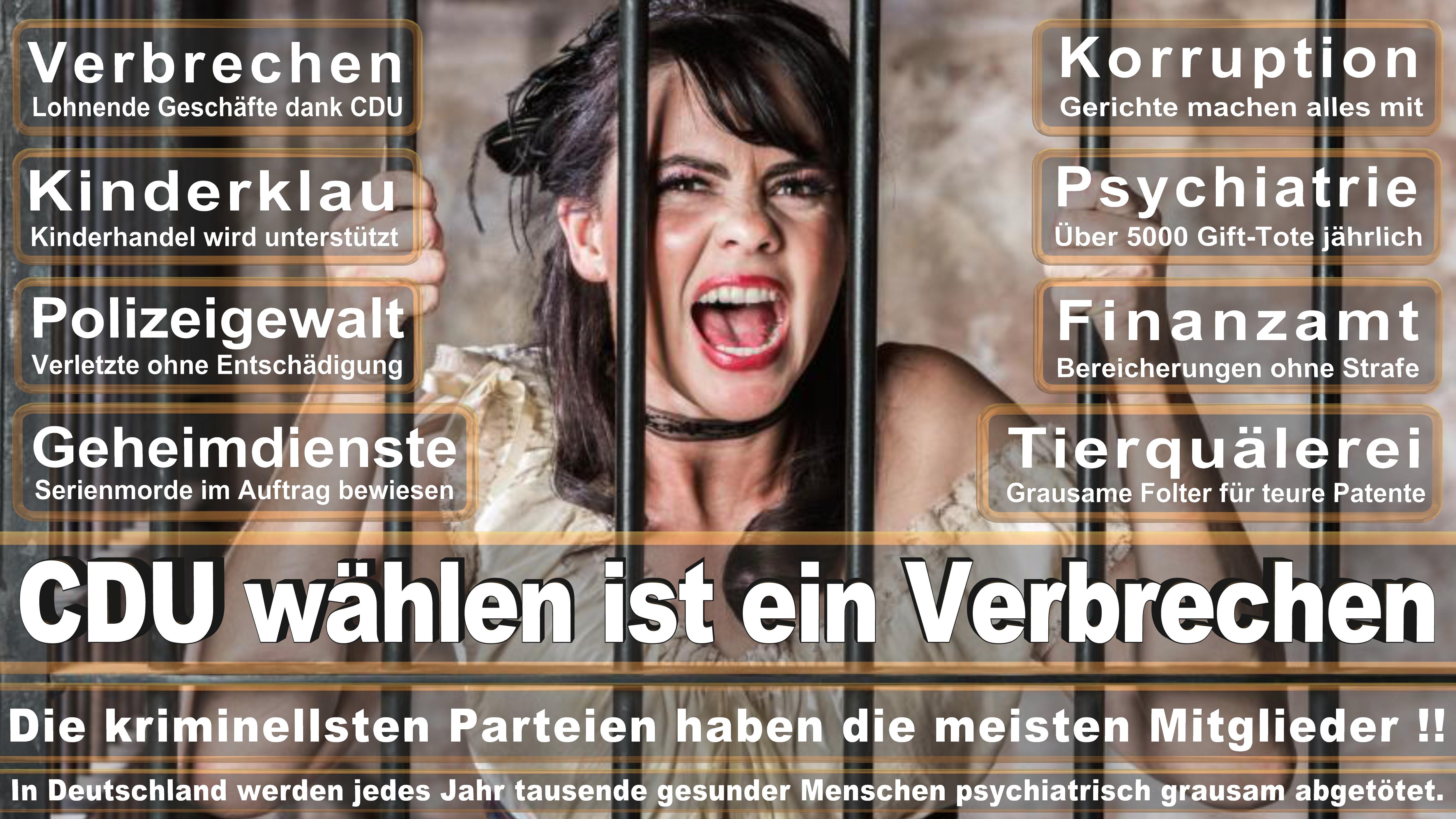 Bundestagswahl-2017-CDU-SPD-FDP (3)