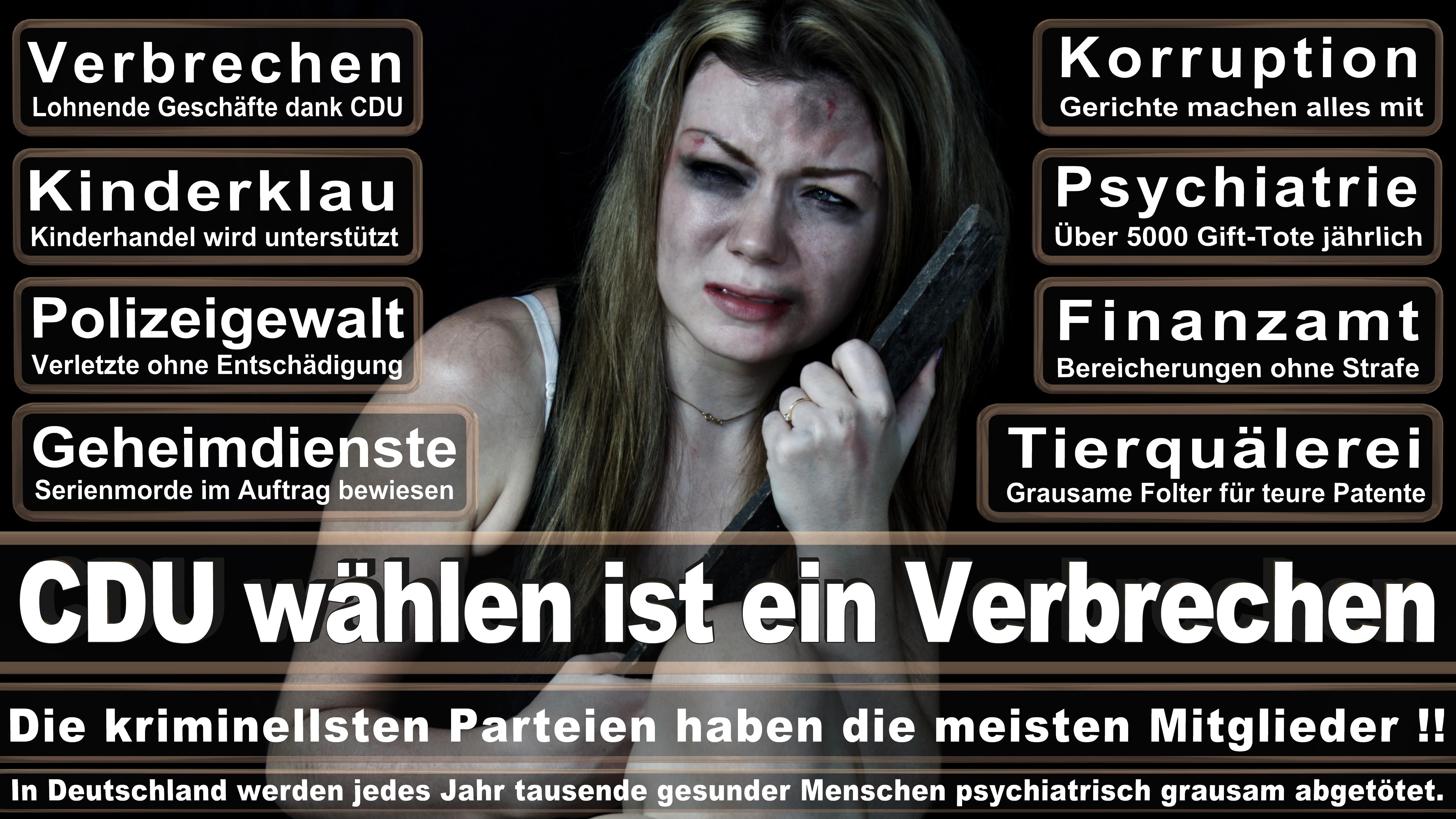 Bundestagswahl-2017-CDU-SPD-FDP (303)