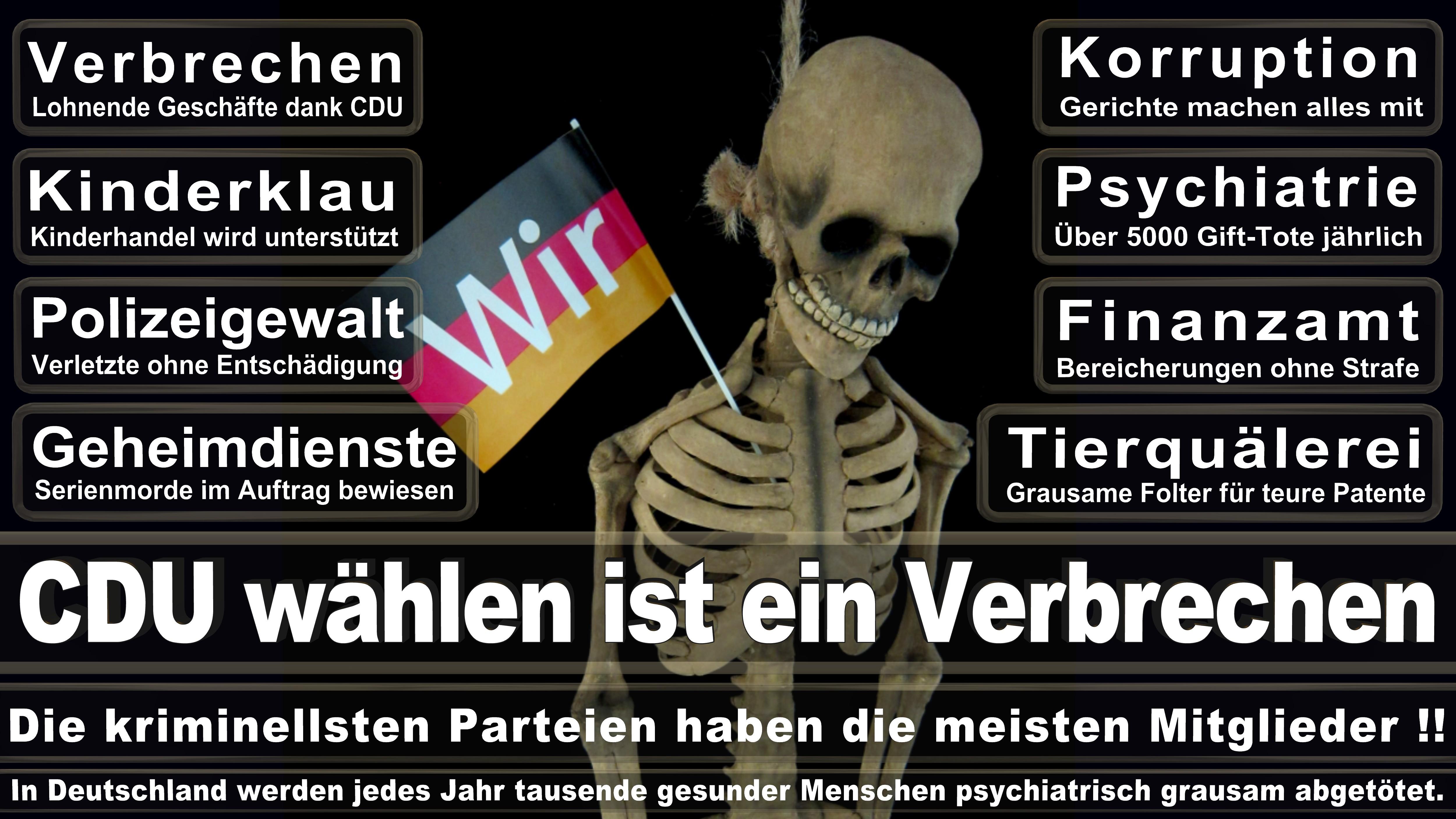 Bundestagswahl-2017-CDU-SPD-FDP (313)