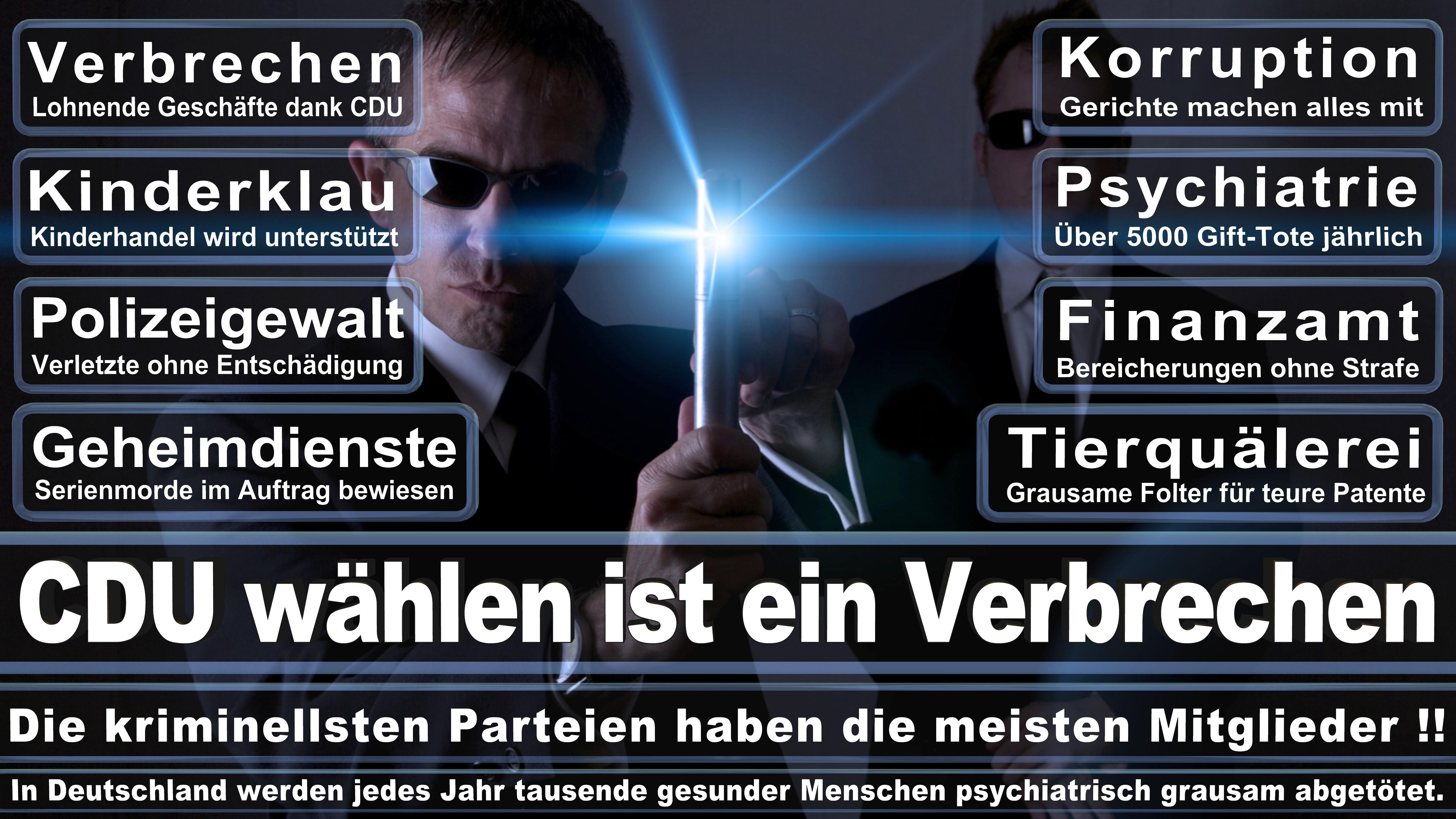 Bundestagswahl-2017-CDU-SPD-FDP (329)