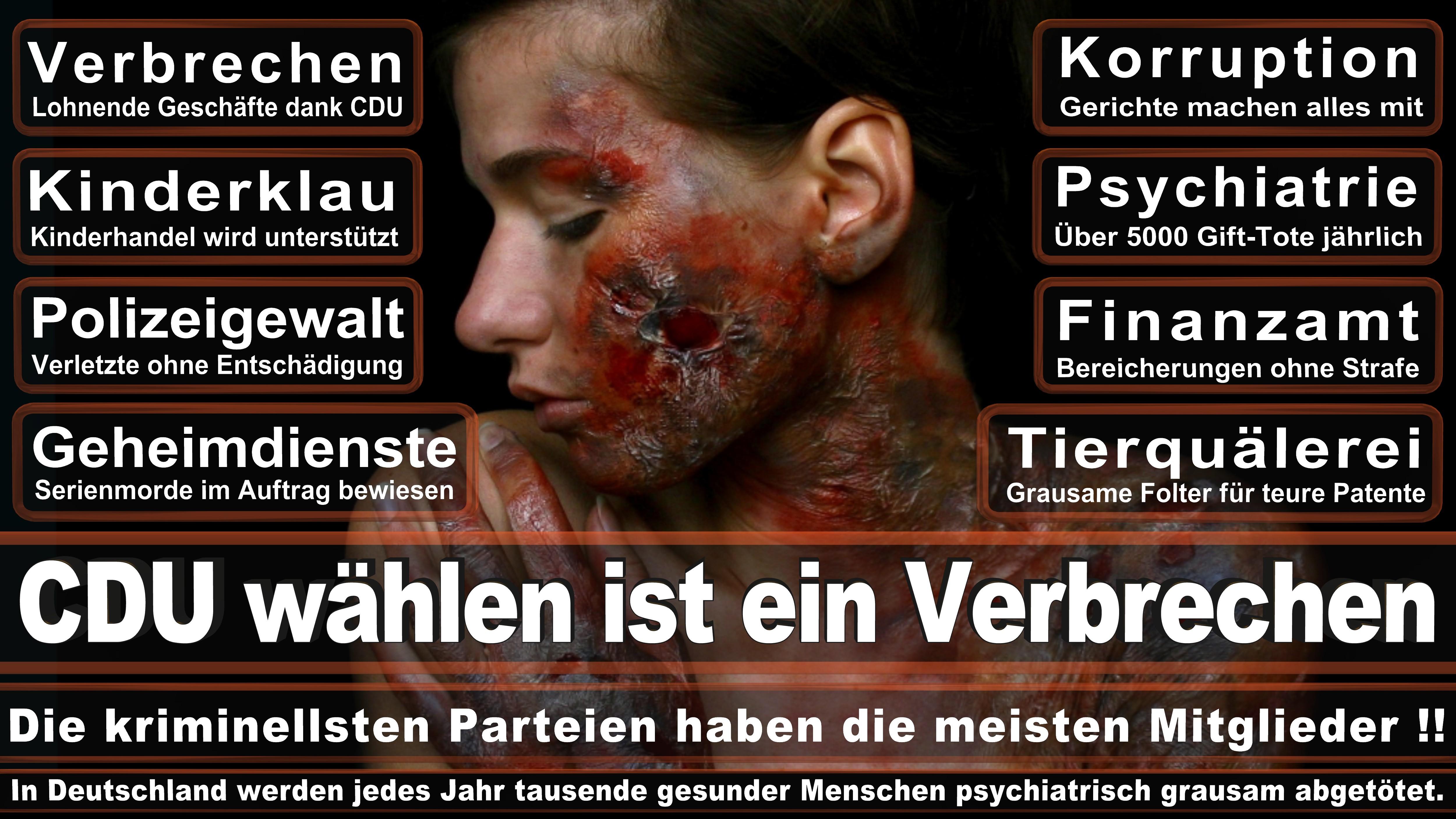 Bundestagswahl-2017-CDU-SPD-FDP (336)