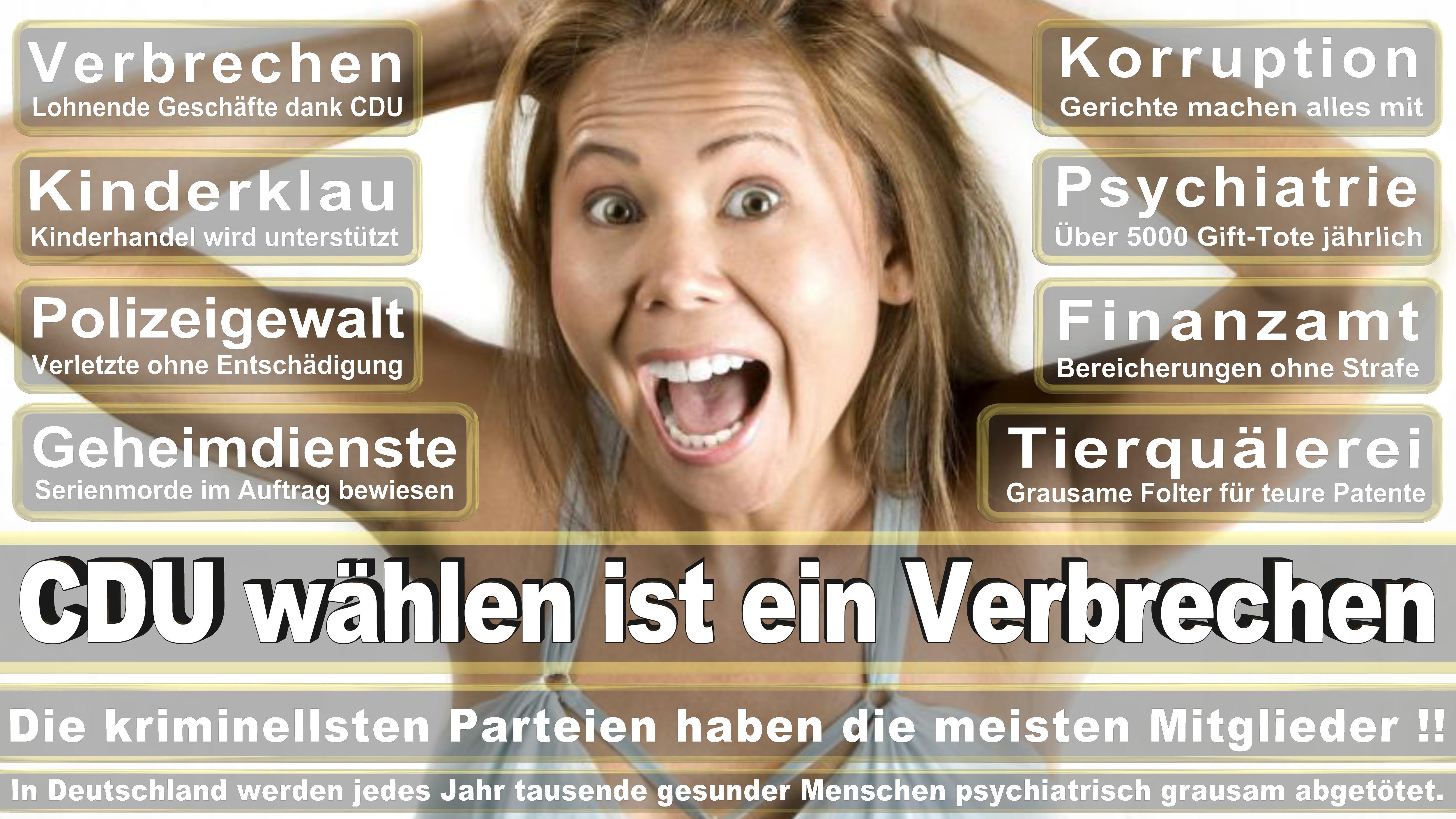 Bundestagswahl-2017-CDU-SPD-FDP (35)