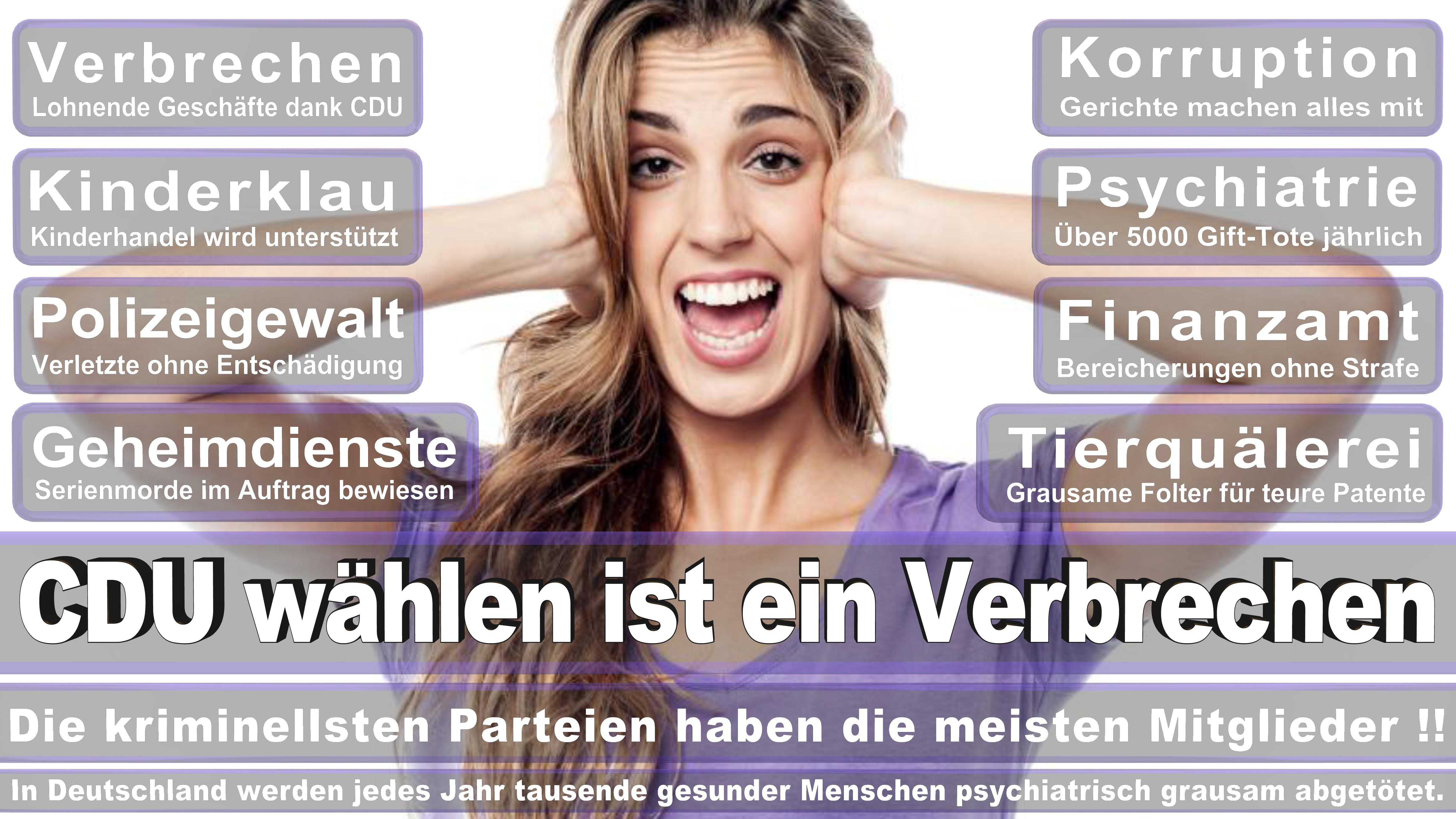 Bundestagswahl-2017-CDU-SPD-FDP (36)
