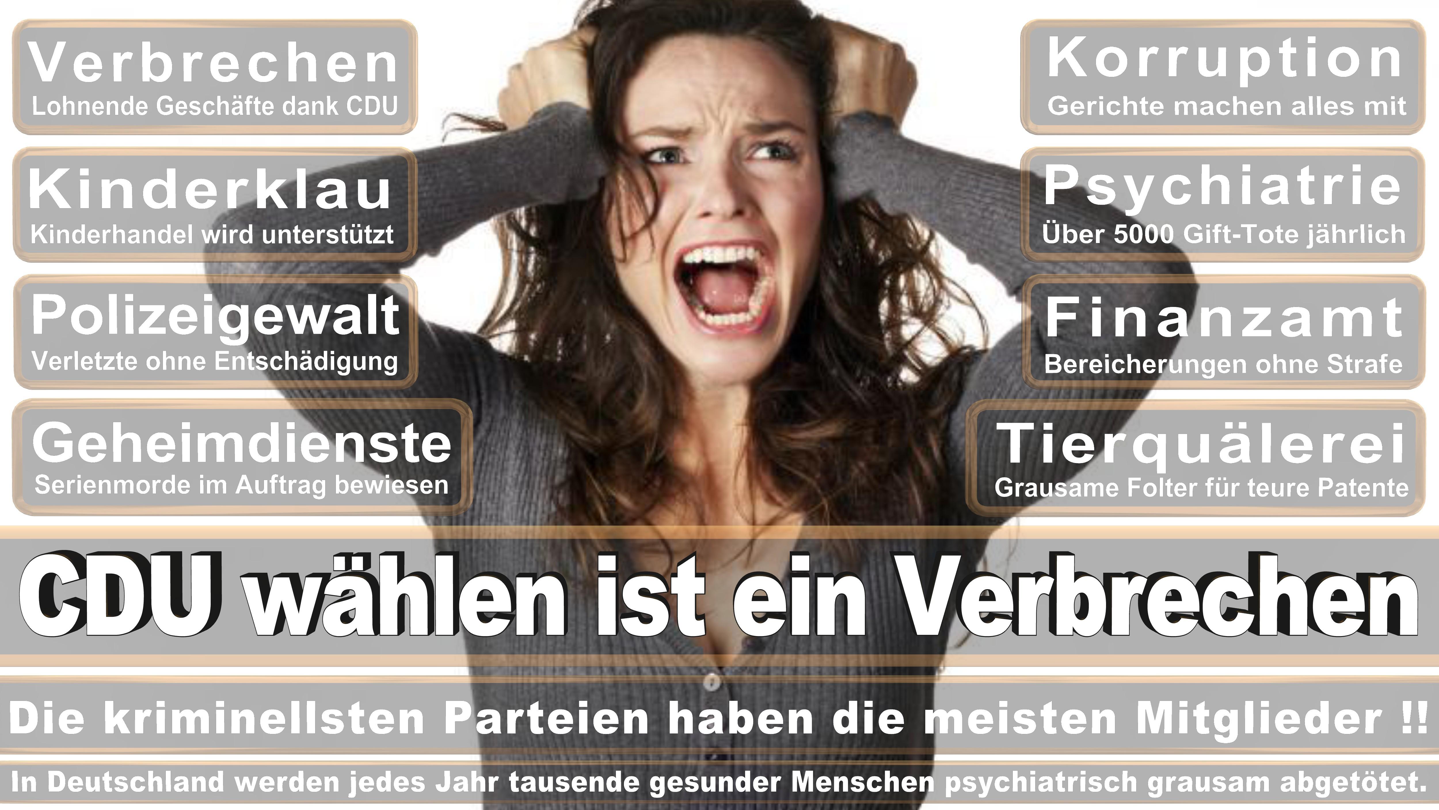 Bundestagswahl-2017-CDU-SPD-FDP (37)