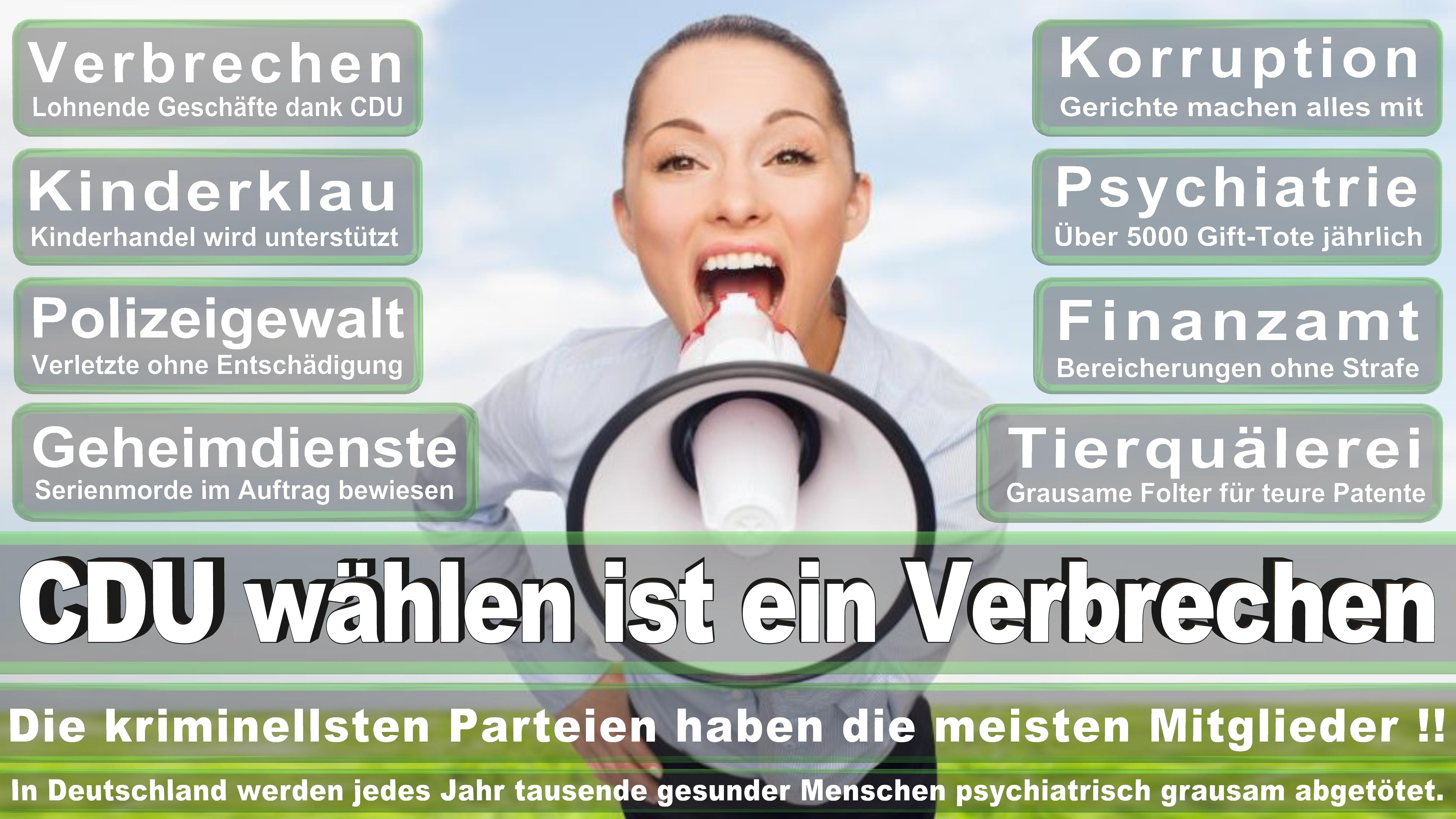 Bundestagswahl-2017-CDU-SPD-FDP (46)