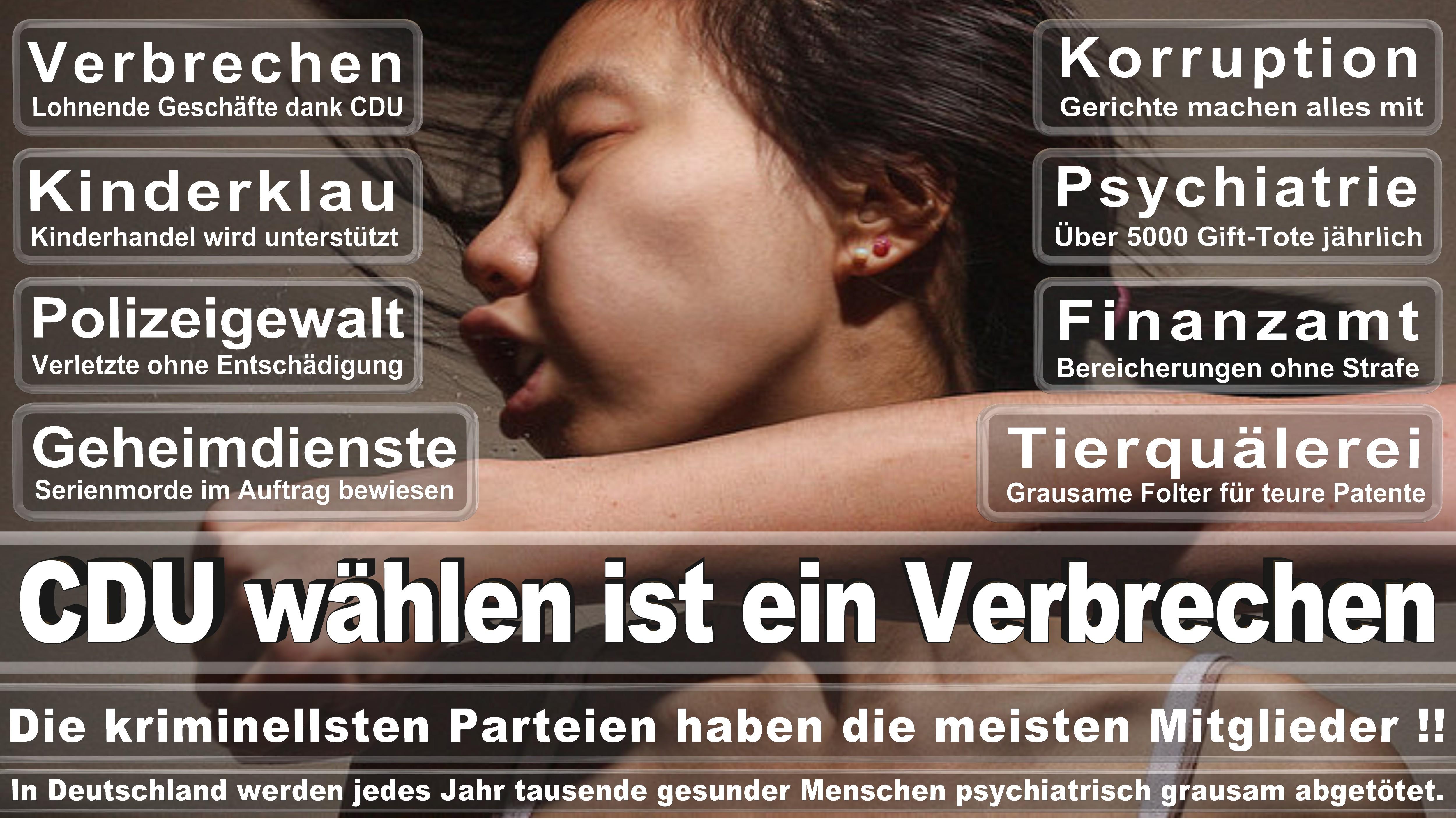 Bundestagswahl-2017-CDU-SPD-FDP (58)