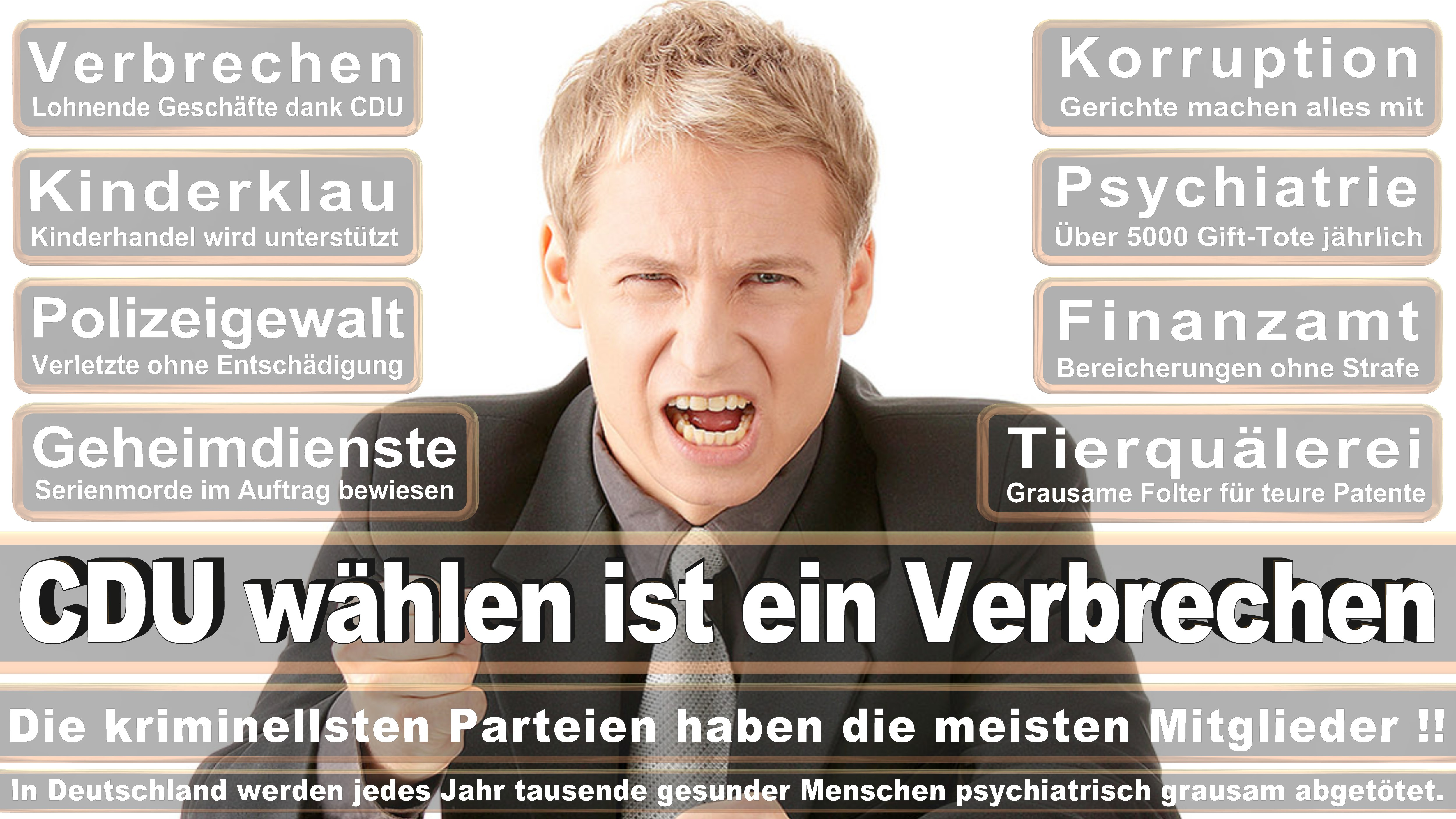 Bundestagswahl-2017-CDU-SPD-FDP (74)