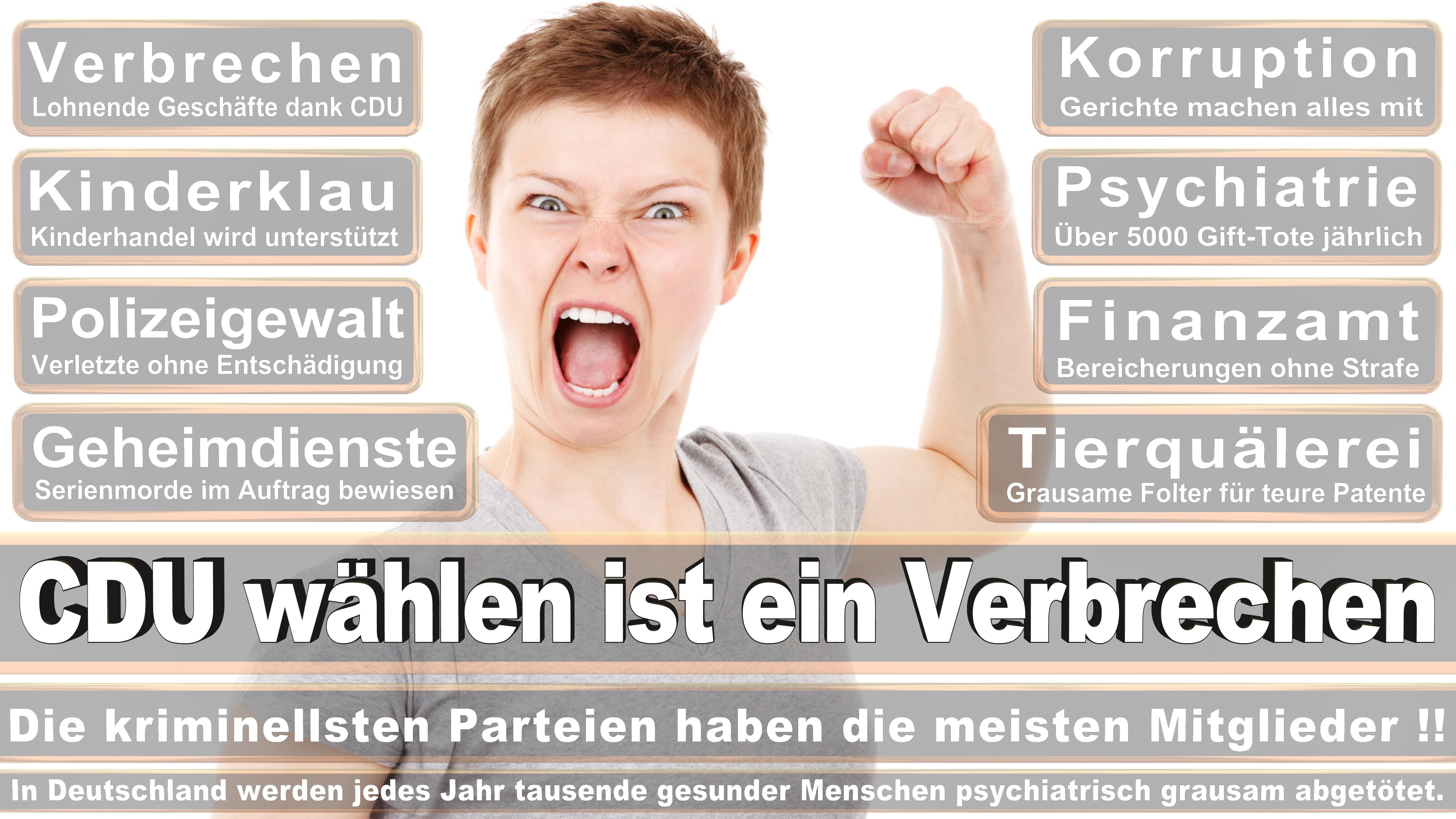 Bundestagswahl-2017-CDU-SPD-FDP (77)