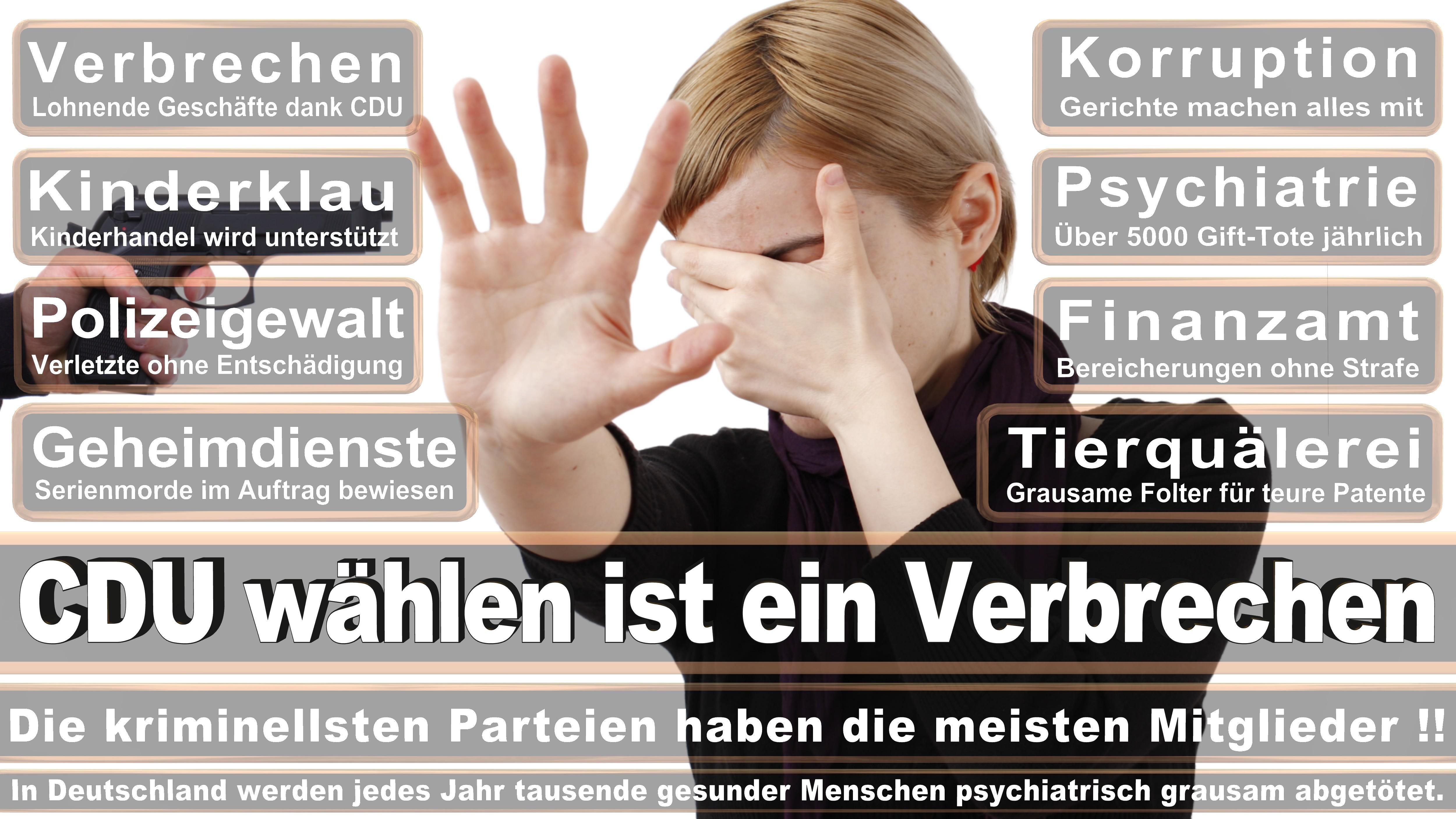 Bundestagswahl-2017-CDU-SPD-FDP (83)
