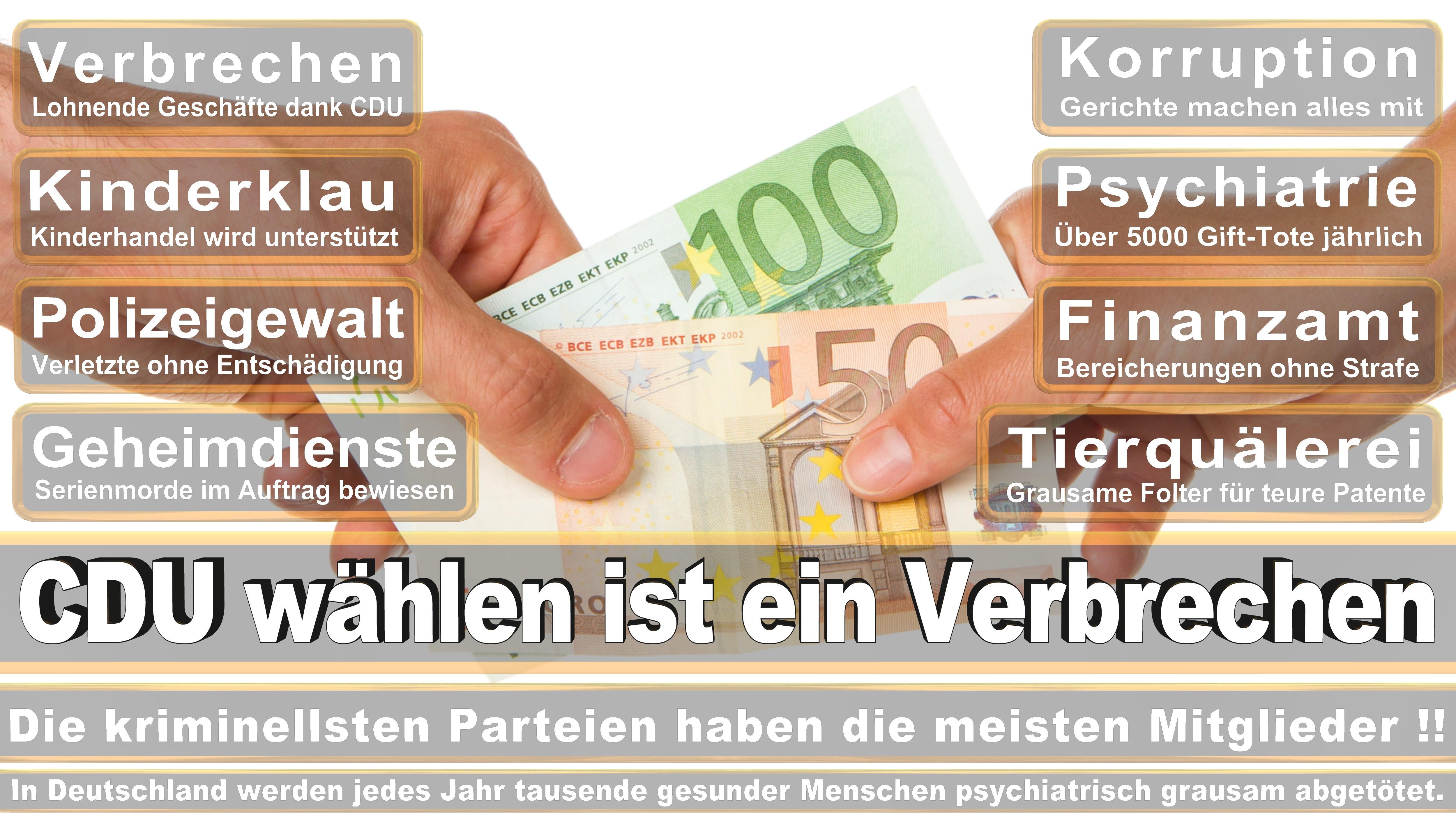 Bundestagswahl-2017-CDU-SPD-FDP (90)