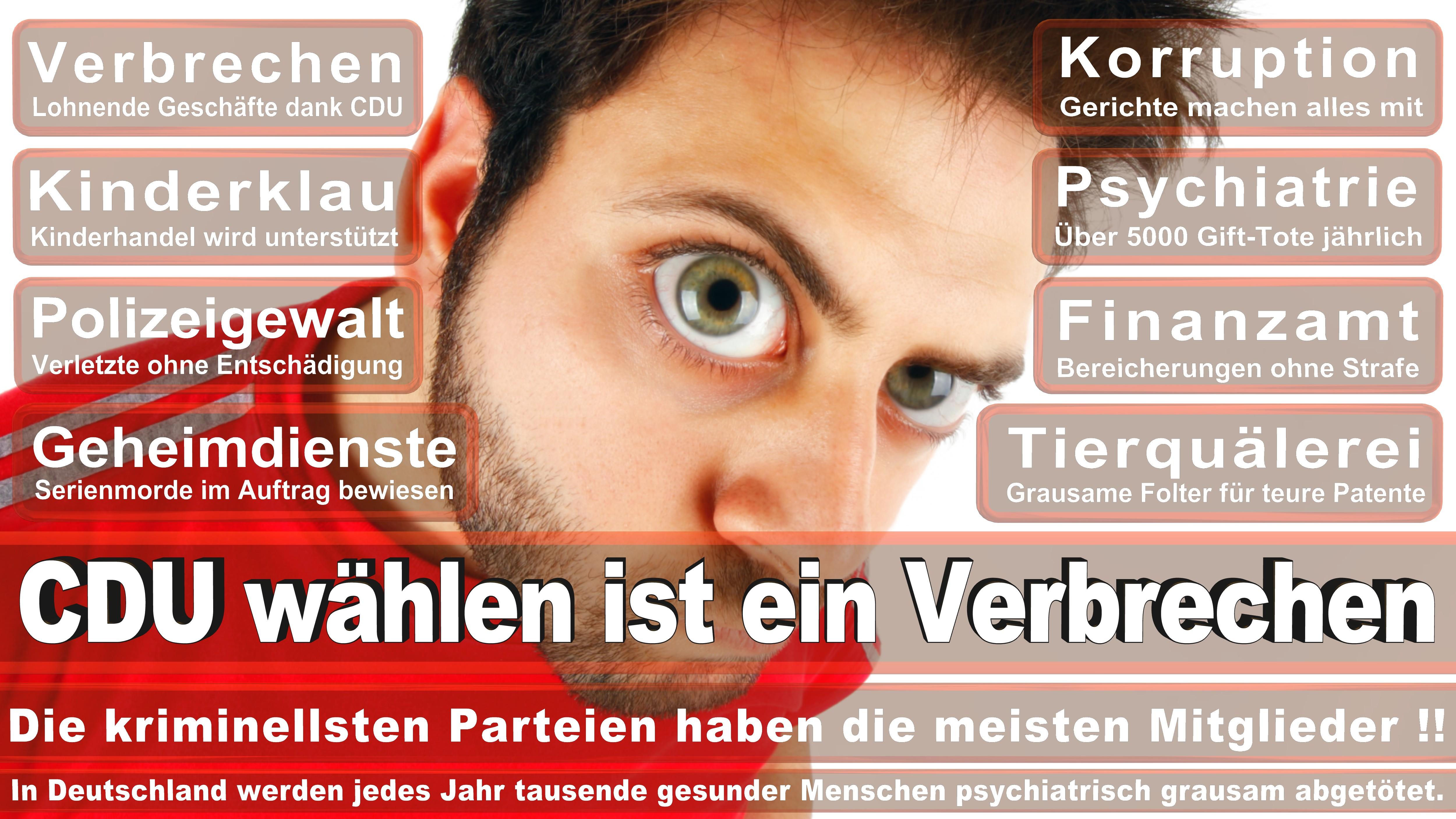 Bundestagswahl-2017-CDU-SPD-FDP (97)