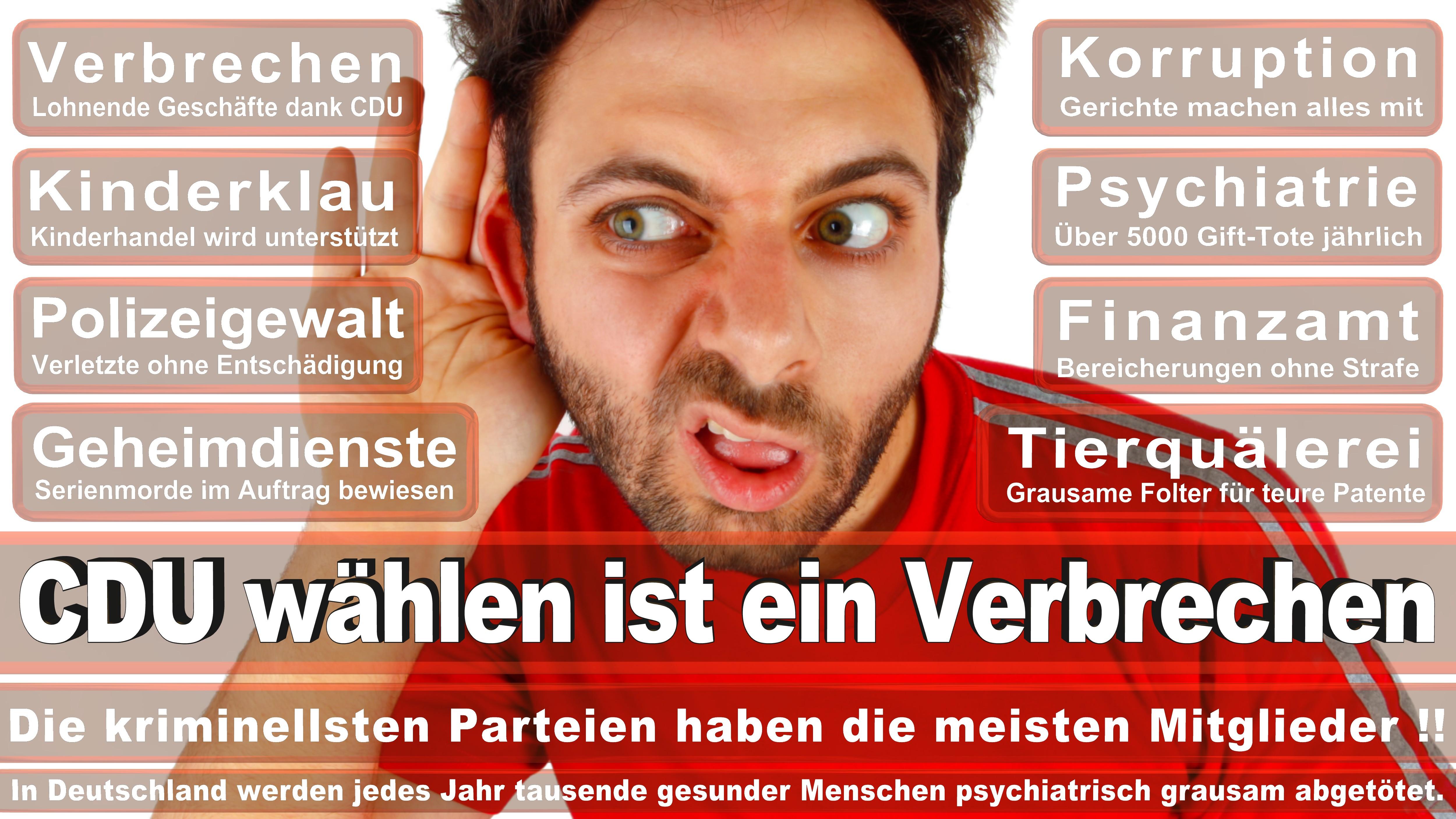 Bundestagswahl-2017-CDU-SPD-FDP (99)